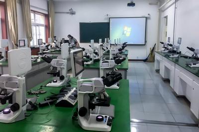 北京市西城外国语学校