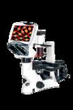 数码液晶荧光显微镜DMS-851